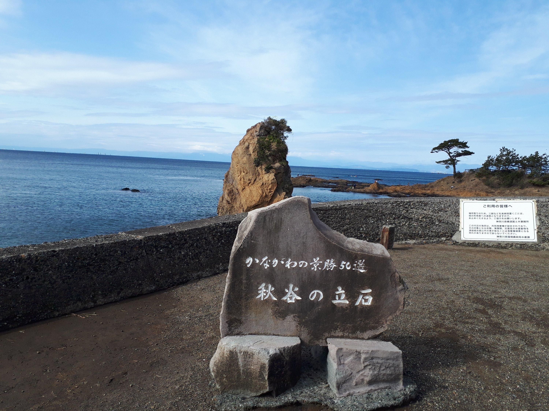 朝、ミカンを食べてから海を見に行き、たそがれた挙句に岩海苔を食べた話をします。