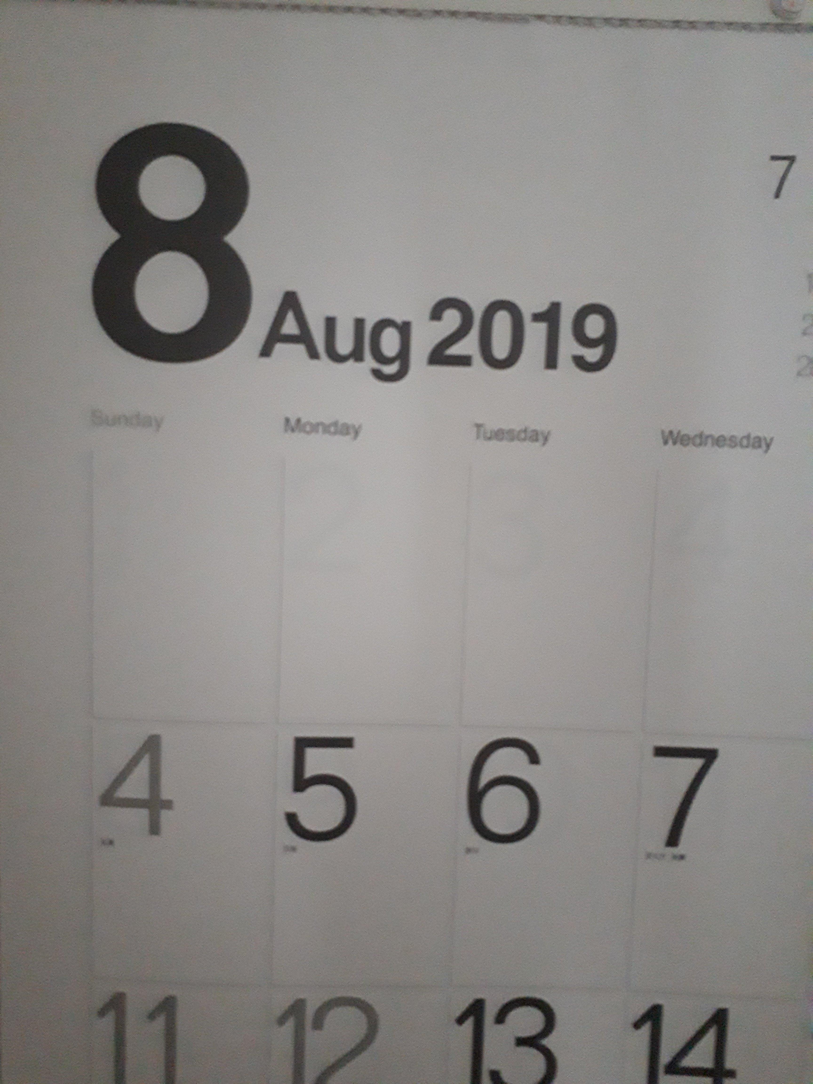 【盛夏】8月に突入しました!!