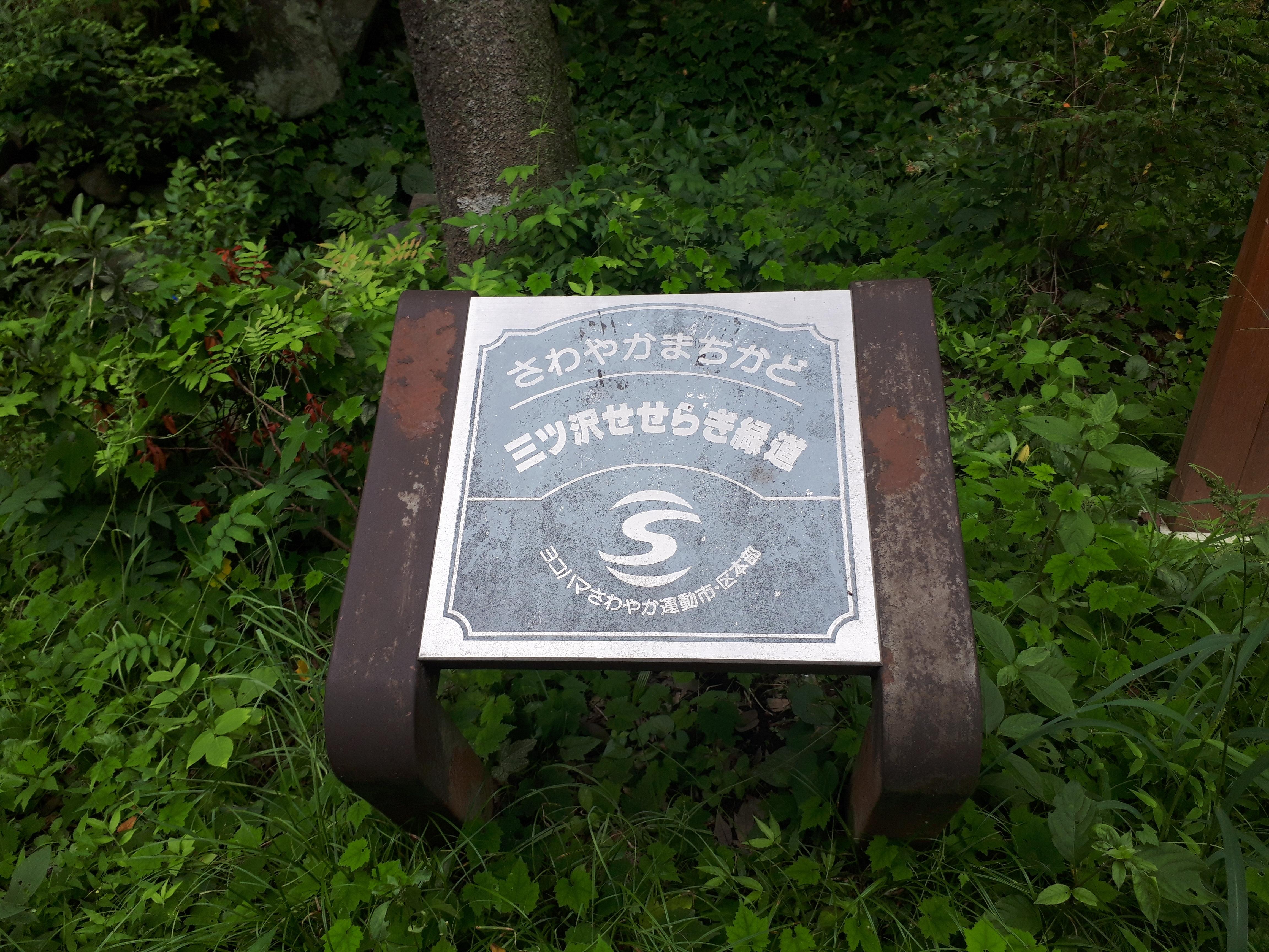 【お散歩】三ッ沢せせらぎ緑道歩いてきました。