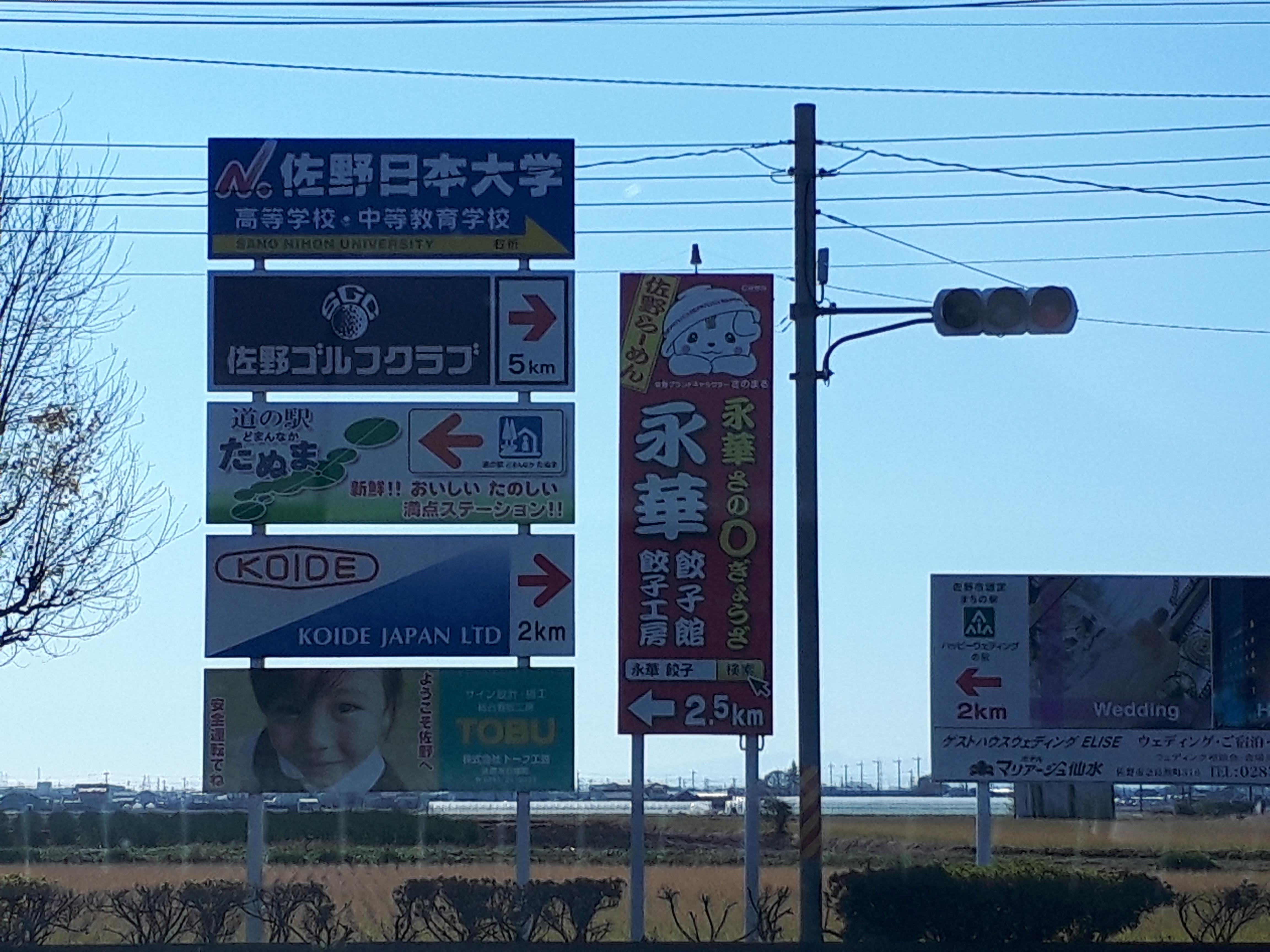 栃木県に、猫たちが大量に住まうモフモフな神社があるというから行ってみた。あ、ちゃんと洗濯済ませてからね。