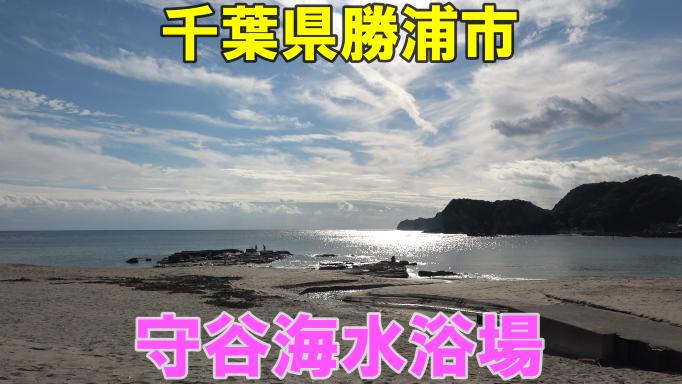 【社長の休日】勝浦の海を堪能してきた!